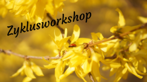 Zyklusworkshop